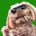 Profielfoto van Mr.Floppy